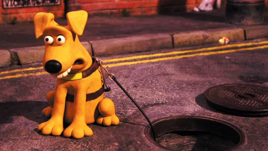 Creature Comforts: Series 2 Part 1 DVD Review